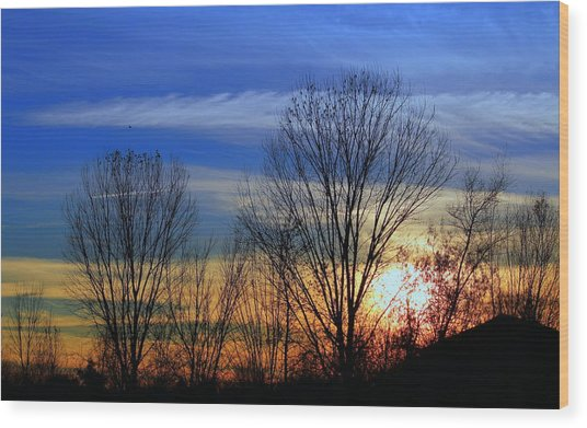 Winter Sky Wood Print by Rima Biswas
