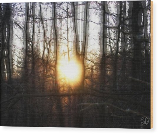 Winter Solstice Wood Print by Gun Legler
