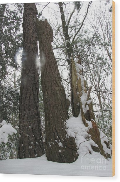 Winter Spirits Wood Print