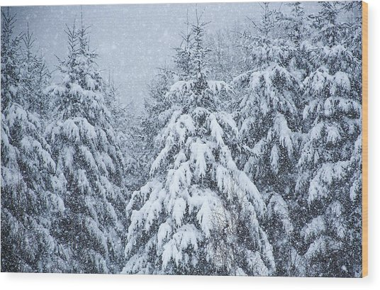 Winter Storm Wood Print