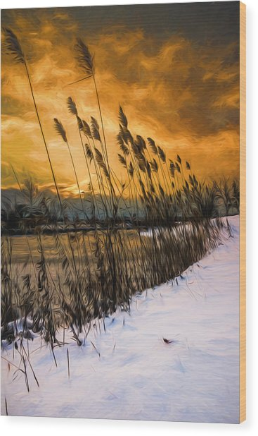 Winter Sunrise Through The Reeds - Artistic Wood Print