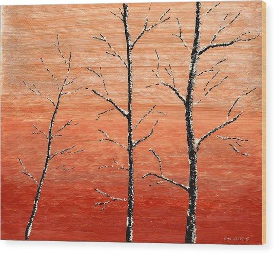 Winter Sunset Wood Print by Dan Haley