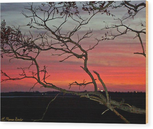 Winter Sunset Wood Print by Lisa Merman Bender