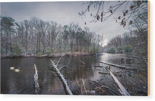 Winter Swans Wood Print