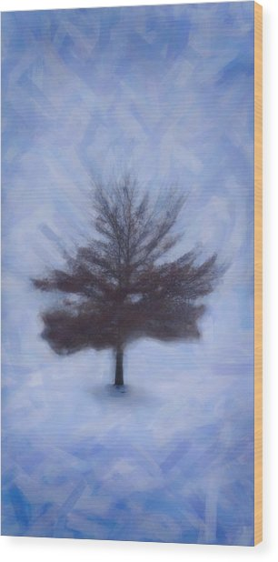 Winter Tree Wood Print by Emmanouil Klimis