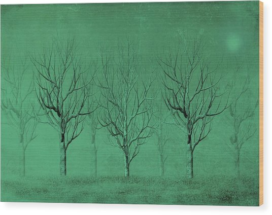 Winter Trees In The Mist Wood Print