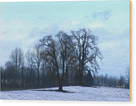 Winter Trees Wood Print by Nur Roy