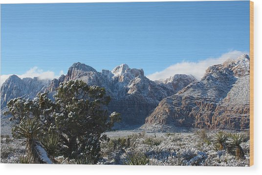 Winter Valley Wood Print