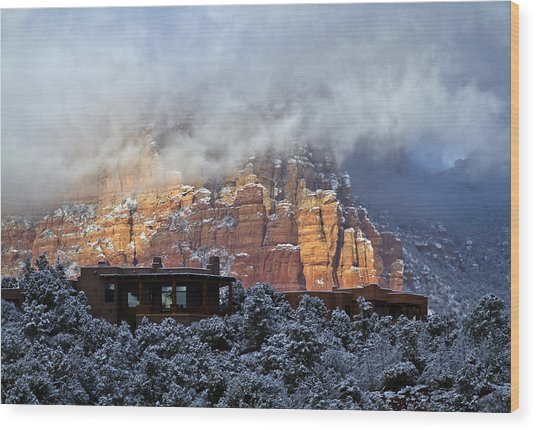 Winter View Wood Print