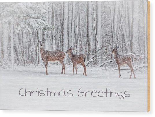 Winter Visits Card Wood Print