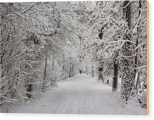 Winter Walk In Fairytale  Wood Print