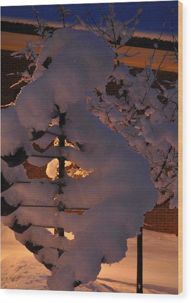 Winter Whirligig Wood Print