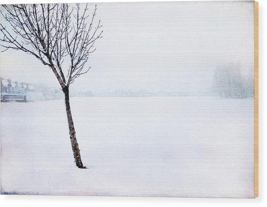 Winter Whiteout Wood Print