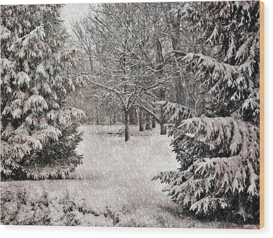 Winter Wonder 7  Wood Print