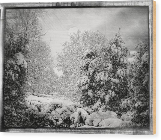 Winter Wonderland With Filmic Border Wood Print