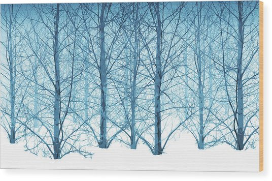 Winter Woodland In Blue Wood Print