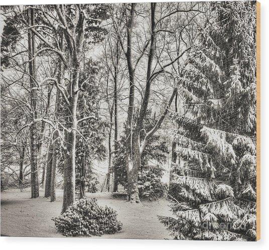Winter Zauber 03 Wood Print