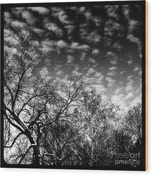 Winterfold - Monochrome Wood Print