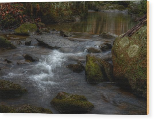 Wintergreen Stream Wood Print