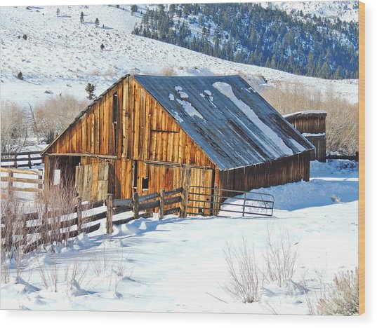 Wintering Range Barn Wood Print