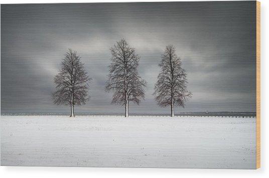 Winter's Halo Wood Print