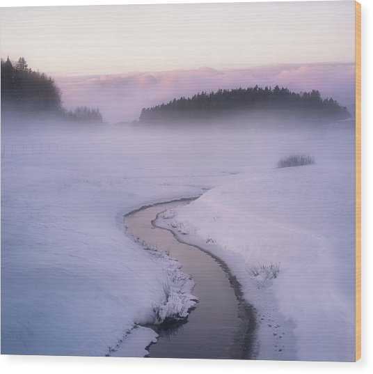 Winters Mystique Wood Print