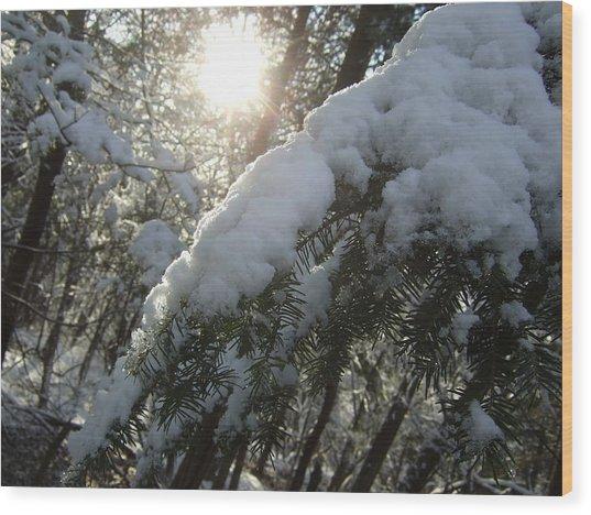 Winter's Paw Wood Print