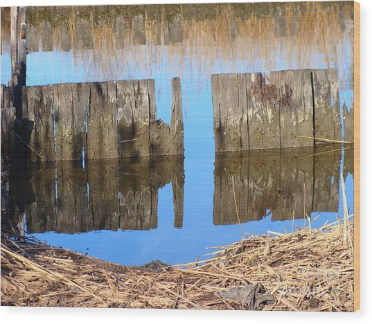 Winters Reflections Wood Print by Stacie Siemsen