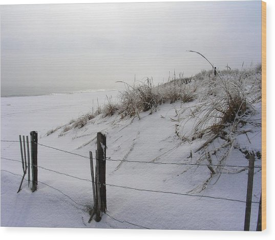 Winters Snow At Island Beach State Park Wood Print by Vincent DeLucia