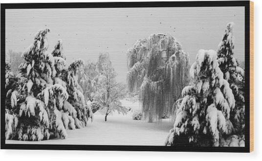 Wintery Scenes 1 Wood Print