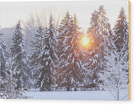 Wintry Sunset Wood Print