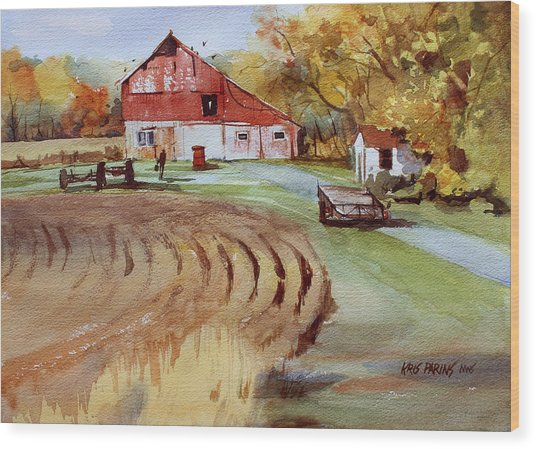 Wisconsin Barn Wood Print by Kris Parins