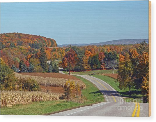Wisconsin's Fall Color Wood Print