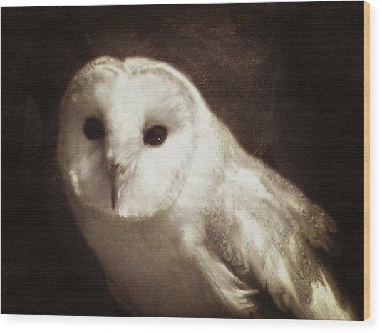 Wisdom Of An Owl Wood Print