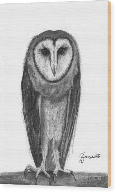 Wisdom With Feathers Wood Print