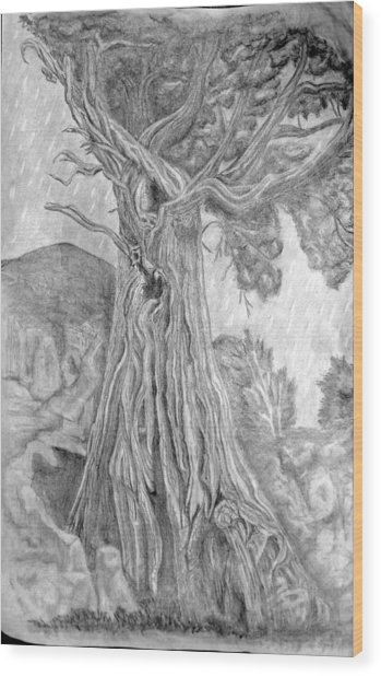 Wise Old Friend Wood Print