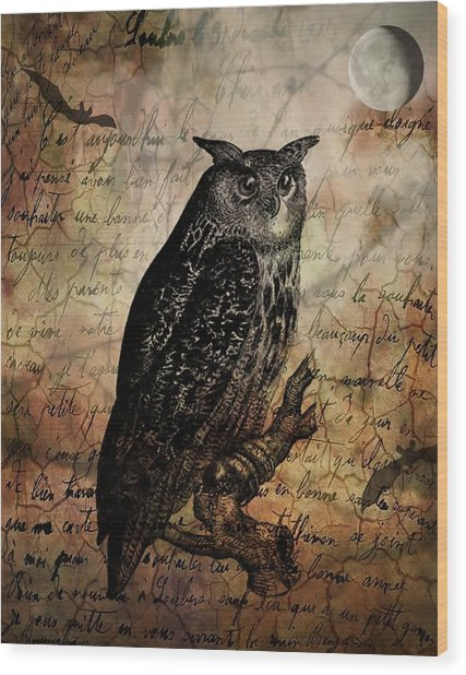 Wise Old Owl Wood Print