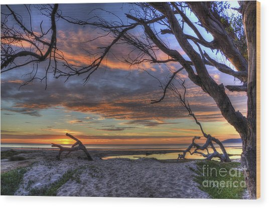 Wishing Branch Sunset Wood Print