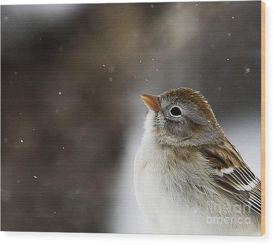Wishing Upon A Snowflake  Wood Print