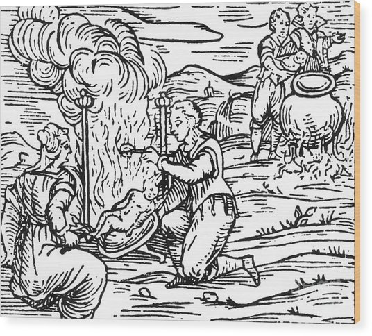 Witches Roasting And Boiling Infants Wood Print