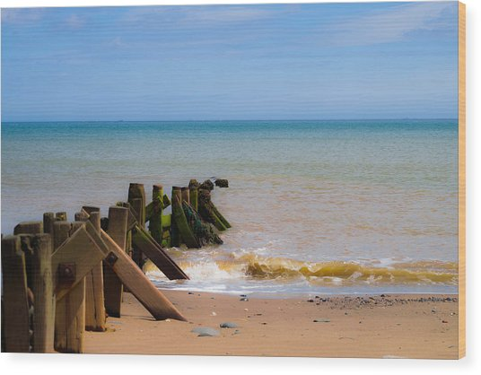 Withernsea Groynes Wood Print