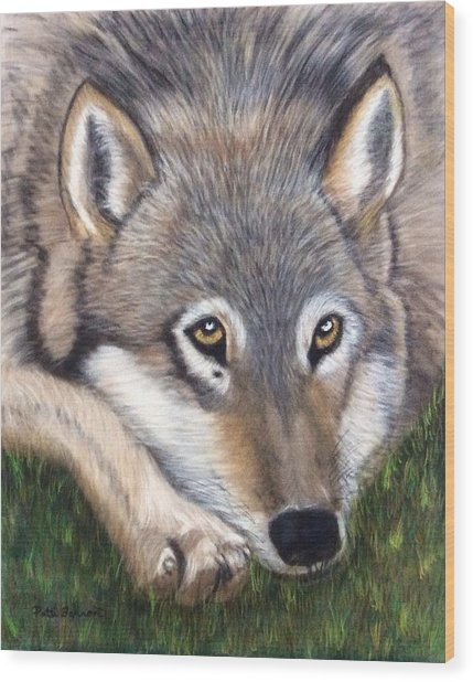 Wood Print featuring the painting Wolf by Patti Ferron