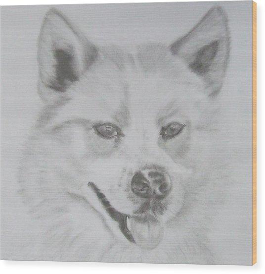Wolf The Husky Wood Print