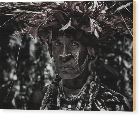 Woman In The Sing-sing Festival Of Mt Hagen - Papua New Guinea Wood Print
