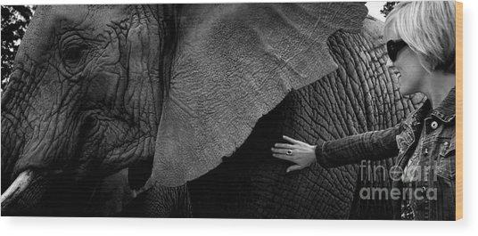 Woman Touching An Elephant Wood Print