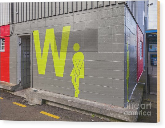 Womens Public Toilet Wellington Nz Wood Print by Colin and Linda McKie