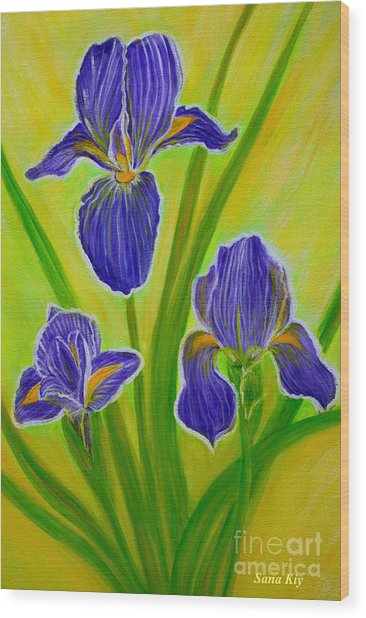 Wonderful Iris Flowers 3 Wood Print