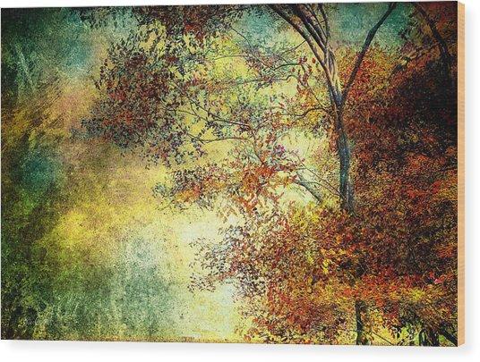Wondering Wood Print