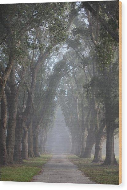 Wonders Of Nature Wood Print