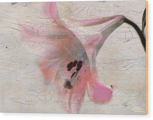Wood Panel With Amaryllis Flower Wood Print